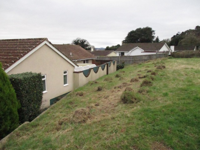 Eco Homes Devon